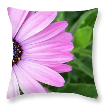 Pink Daisy Throw Pillow by Sabrina L Ryan