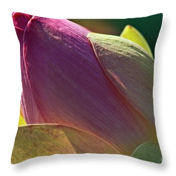 Pink Lotus Bud Throw Pillow by Heiko Koehrer-Wagner