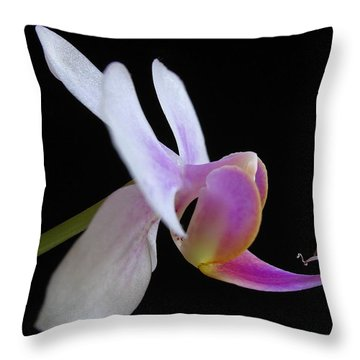 Pink Orchid Throw Pillow by Juergen Roth