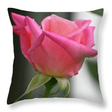 Pink Rose Squared Throw Pillow by Teresa Mucha