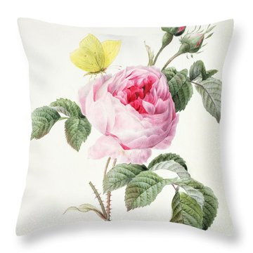Pink Rose With Buds And A Brimstone Butterfly Throw Pillow by Louise DOrleans