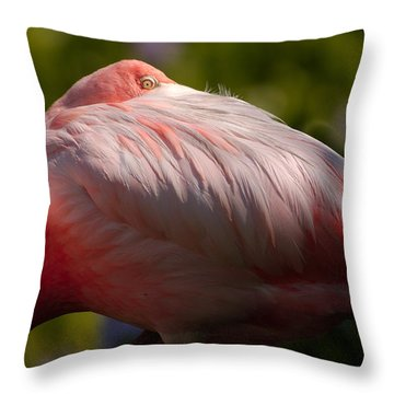 Pink Throw Pillow by Sebastian Musial