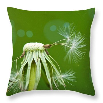 Pixie Wishes Throw Pillow by Lisa Knechtel
