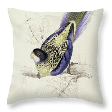 Platycercus Brownii, Or Browns Parakeet Throw Pillow by Edward Lear