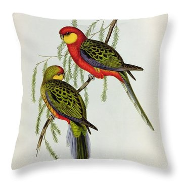 Platycercus Icterotis Throw Pillow by John Gould