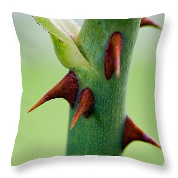 Pointed Personality Throw Pillow by Christopher Holmes