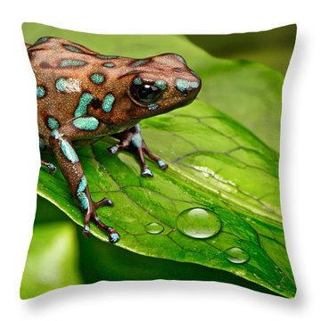 poison art frog Panama Throw Pillow by Dirk Ercken