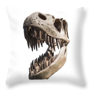 Portrait Of A Dinosaur Skeleton, Isolated On Pure White. Throw Pillow by Caio Caldas