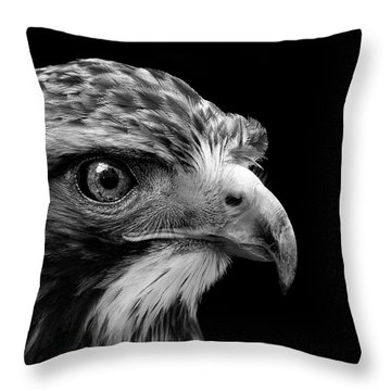 Portrait Of Common Buzzard In Black And White Throw Pillow by Lukas Holas
