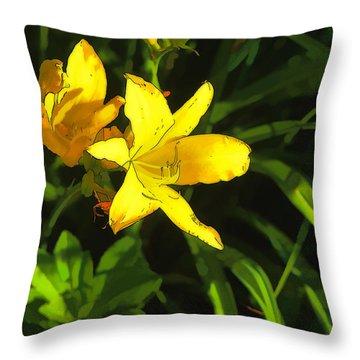 Pot Luck Throw Pillow by Tom Prendergast
