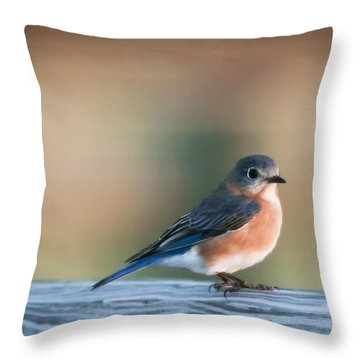 Pretty In Blue Throw Pillow by Phill Doherty