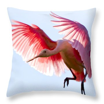 Pretty In Pink Throw Pillow by Janet Fikar