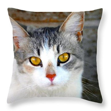 Pretty Kitty Throw Pillow by David Lee Thompson