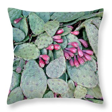 Prickly Pear Cactus Fruits Throw Pillow by Mother Nature