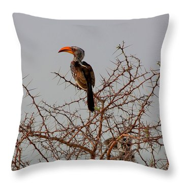 Prickly Perch Throw Pillow by Stacie Gary