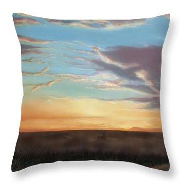 Private Sunrise.  Keep Out Throw Pillow by Albert Puskaric