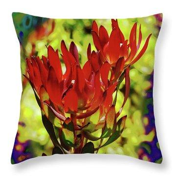 Protea Flower 4 Throw Pillow by Xueling Zou