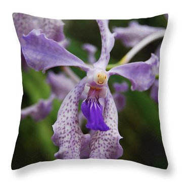 Proud Girl Throw Pillow by Michael Peychich