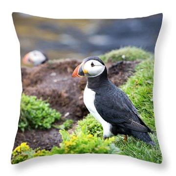 Puffin  Throw Pillow by Jane Rix
