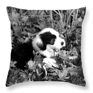 Puppy In The Leaves Throw Pillow by Kathleen Struckle