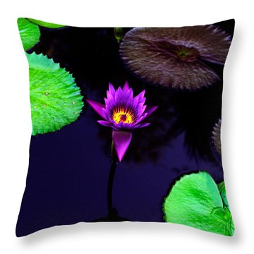 Purple Lily Throw Pillow by Gary Dean Mercer Clark