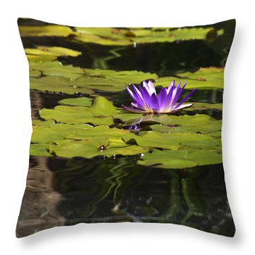 Purple Water Lilly Distortion Throw Pillow by Teresa Mucha