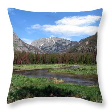 Quiet Throw Pillow by Amanda Barcon