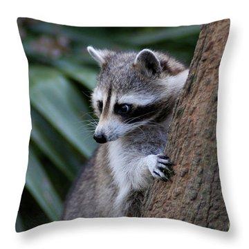 Raccoon Throw Pillow by Scott Pellegrin