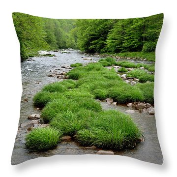 Rainy Day On Williams River  Throw Pillow by Thomas R Fletcher