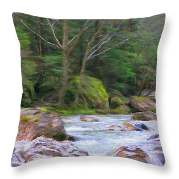 Rapids At The Rivers Bend Throw Pillow by Jeff Kolker