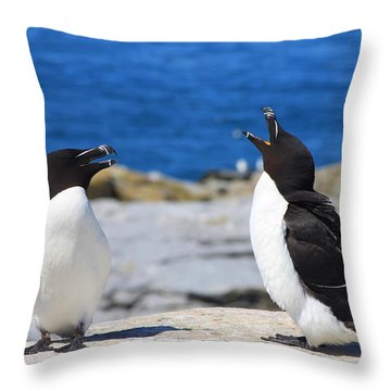 Razorbills Calling On Island Throw Pillow by John Burk