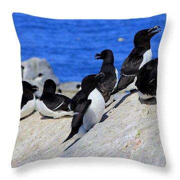 Razorbills Throw Pillow by John Burk