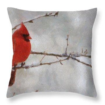 Red Bird Of Winter Throw Pillow by Jeff Kolker