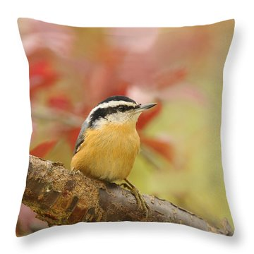 Red Breasted Nuthatch  Throw Pillow by Lara Ellis