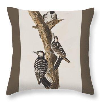 Red-cockaded Woodpecker Throw Pillow by John James Audubon
