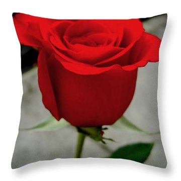 Red Dream Rose Throw Pillow by Nina Ficur Feenan