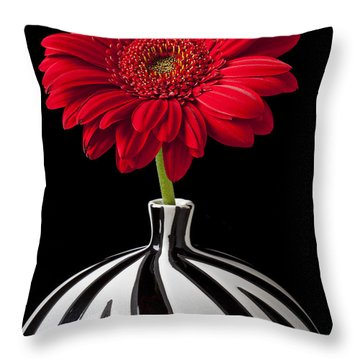 Red Gerbera Daisy Throw Pillow by Garry Gay