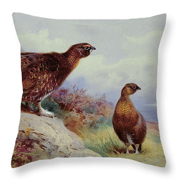Red Grouse On The Moor, 1917 Throw Pillow by Archibald Thorburn
