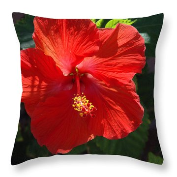 Red Hibiscus Throw Pillow by Susanne Van Hulst