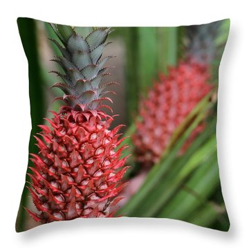 Red Pineapples Throw Pillow by Sabrina L Ryan