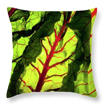 Red River Throw Pillow by Bobby Villapando