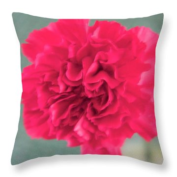 Red Rose Throw Pillow by Dick Willis