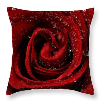 Red Rose Throw Pillow by Mark Johnson