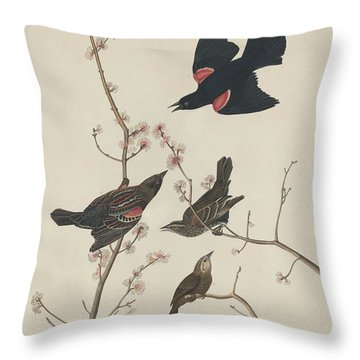 Red-winged Starling Throw Pillow by John James Audubon
