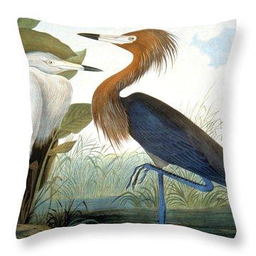 Reddish Egret, Throw Pillow by Granger