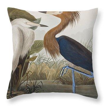 Reddish Egret Throw Pillow by John James Audubon
