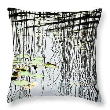 Reeds And Reflections Throw Pillow by Dave Fleetham - Printscapes