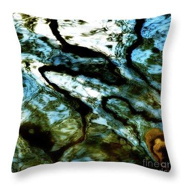 Reflection In Water Throw Pillow by Bernard Jaubert
