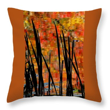 Reflections On Infinity Throw Pillow by Angela Davies
