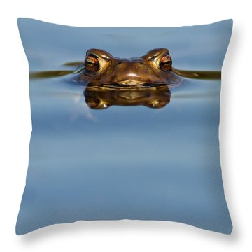 Reflections - Toad In A Lake Throw Pillow by Roeselien Raimond
